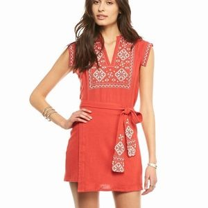 NWT free people running wild embroidered dress M